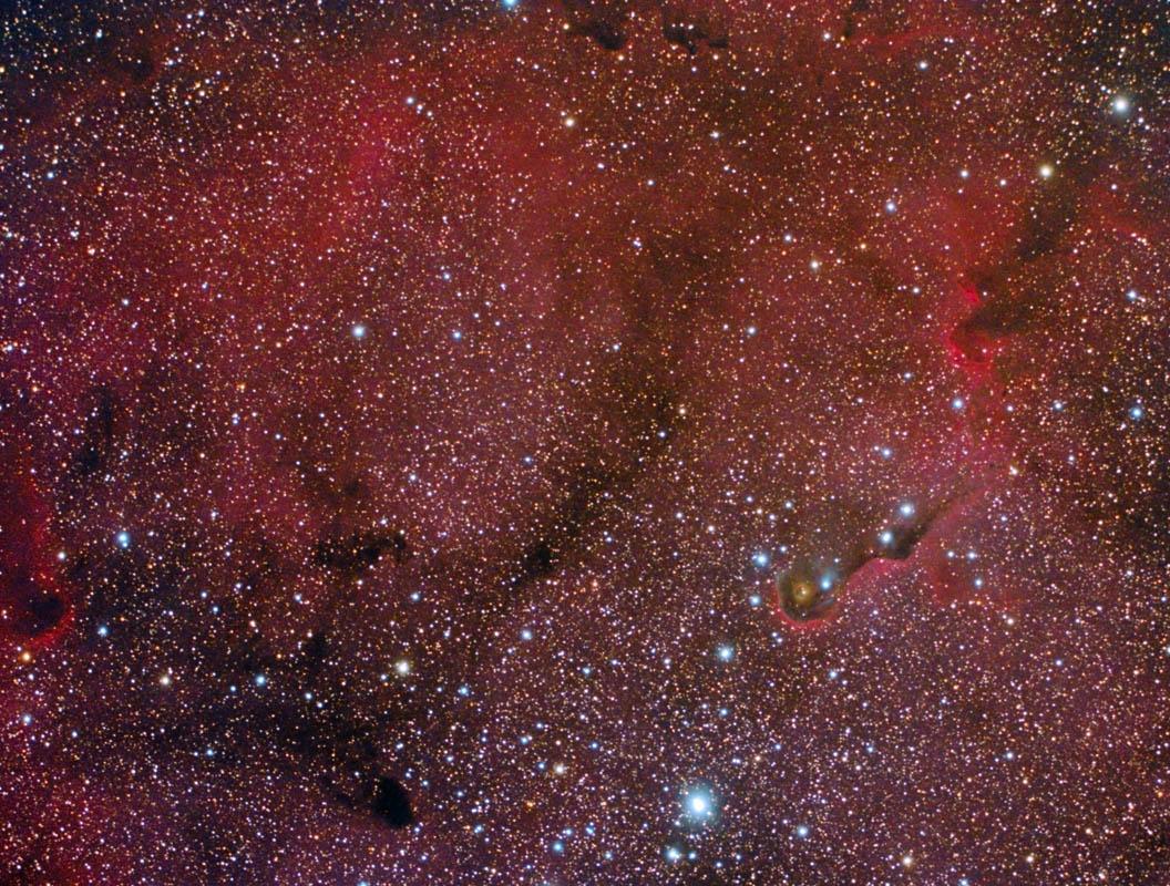 Elephant Trunk Nebula and IC 1396 Area
